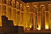 Hypostyle Hall, Luxor_081