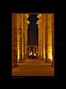 Colonnade Amenhotep_006blk