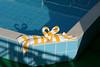 Cruise pool_006