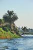 Nile Lush Shore_034