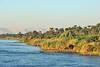 Nile Lush Shore_011