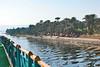 Nile Lush Shore_022