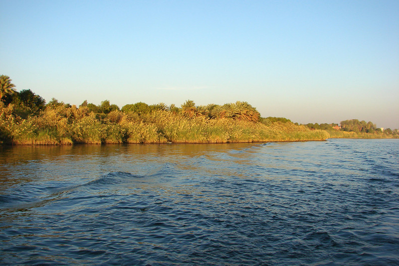 Nile Lush Shore_002ms