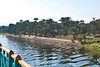 Nile Lush Shore_023