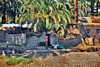 Nile Villages_031