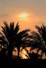 SharmEl Sunrise_016c