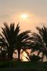SharmEl Sunrise_016