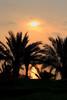 SharmEl Sunrise_017c