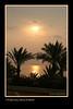 SharmEl Sunrise_013Blk Pap