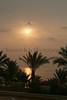 SharmEl Sunrise_011pe