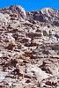 Sinai Mts Gray&Blk_002