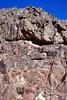 Sinai Mts Gray&Blk_005
