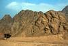 Sinai Mts Brn&Red_217