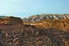 Sinai Mts Brn&Red_207