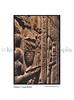 Temple Hathor Reliefs_001wht