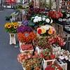 Flower's market<br /> <br /> Virágpiac