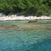 Our favourite diving place<br /> <br /> A kedvenc búvár hely volt, a szikla miatt sokféle hal volt