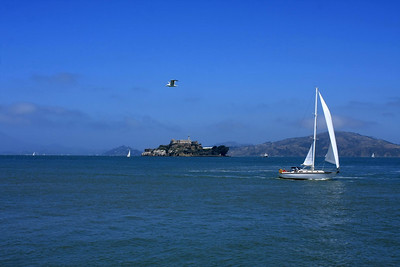Lucky shot: Alcatraz, yacht and a seagull :)