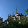 Notre Dame in the Trees