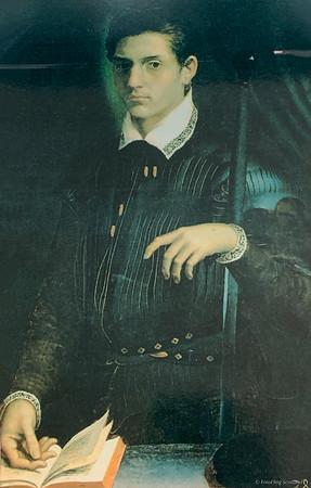 Ritratto del giovane Alfonso II - Girolamo da Carpi