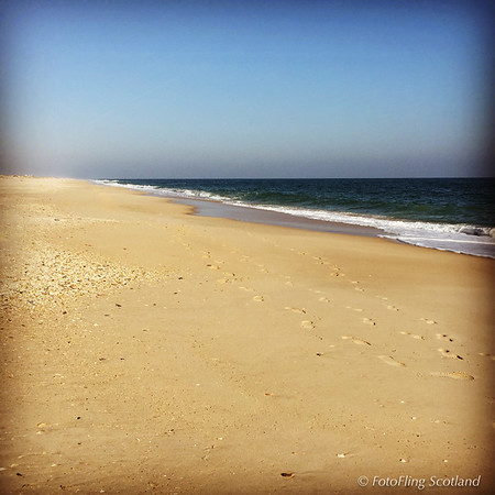A beach in November