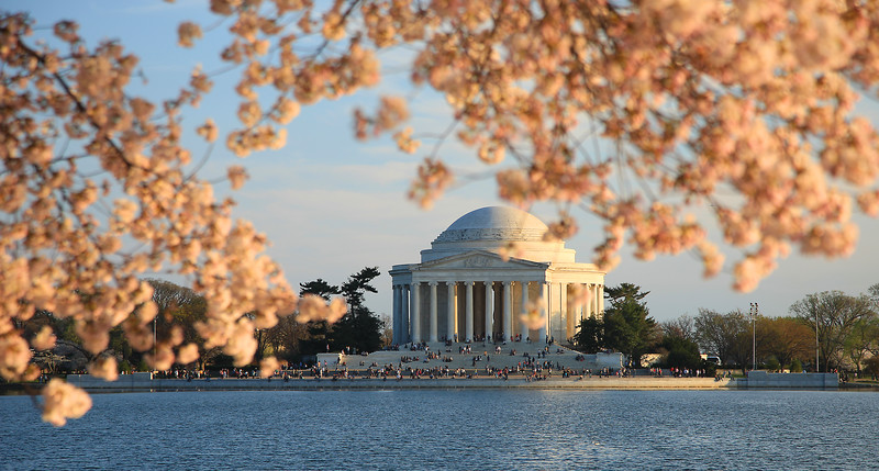 Cherry Blossoms, Tidal Basin, People, Jefferson Memorial, Washington DC