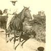Man riding a horse near the Mexican Border (03213)