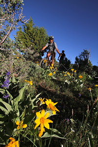 Mountain Biking Eagle, CO