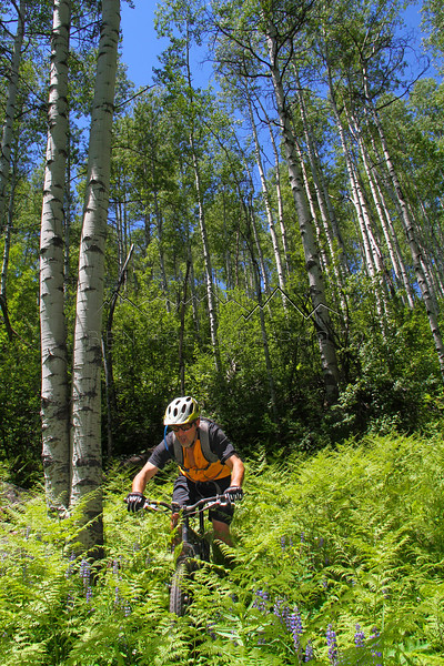 Rider: Kurt Olesek at Beaver Creek, CO