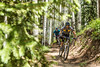 Mountain Biking Vail, CO