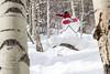 Mike Hood Method Air, Northern Sawatch Range, CO