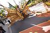 Caribbean Parade Ottawa Aug 18, 2007