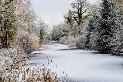 Oldbridge Canal, Co Meath