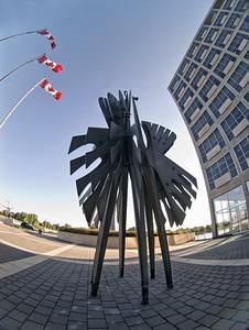 Scenes of Ottawa Ontario Canada