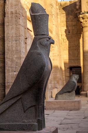Horus profile