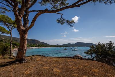 Palombaggia beach - Corsica