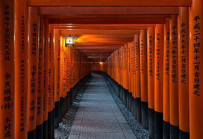 Vermillion Gates || Kyoto Japan