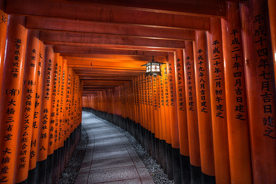 Sacred Path || Kyoto Japan