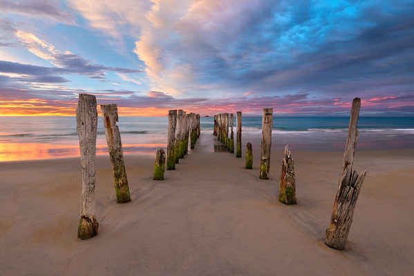 Soft Surrender || St Clair Beach New Zealand