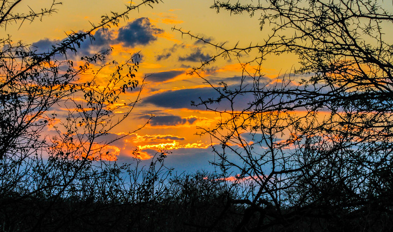 Sunset ~ Kruger National Park, South Africa