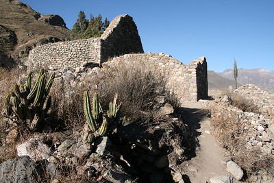 Colca Valley