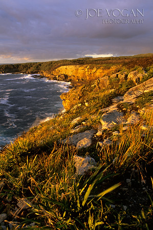 Booderee National Park, New South Wales, Australia