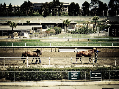 Bay Meadow Racetrack