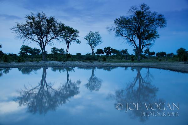 Water Hole, Okavango Delta, Botswana