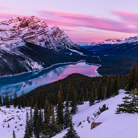 Peyto Lake in the Snow