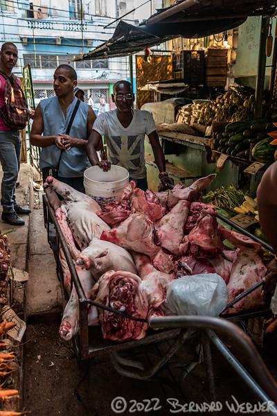Food Market 3
