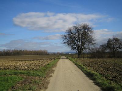 Near Ketsch