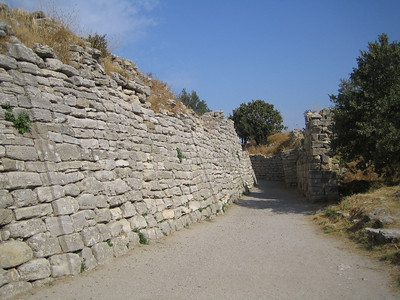Troy. Wall of Troy VI