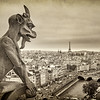 Paris from the tower of Notre Dame Cathedral