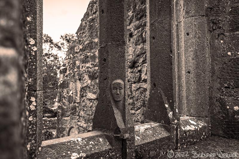 Face in the Column